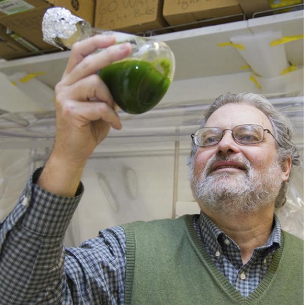 Esteemed biochemist Bob Blankenship retires